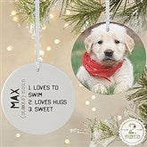 2-Sided Definition of Pet Photo Ornament- Large - 15076-2L