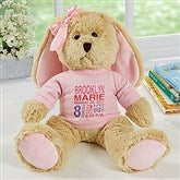 Baby's Birthday Personalized Plush Bunny- Pink - 17954-P