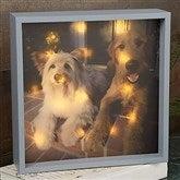 Personalized Pet Photo LED Light Shadow Box- 10