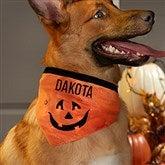 Camping Lantern Bandana Over The Collar Dog Bandana Tie On Dog Bandana Light Me Up Bandana