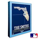 Tampa Bay Rays Personalized MLB Wall Art - 20720