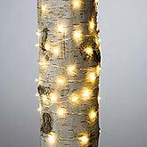 LED String Lights - 60 Count - 20935