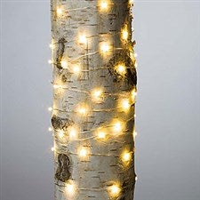 LED String Lights - 60 Count - 20935
