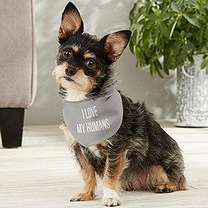 Personalised Blue Star Puppy Dog Tie On Bandana