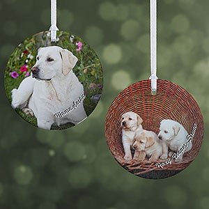 b53631b4e0cc Personalized Pet Gifts   PersonalizationMall.com