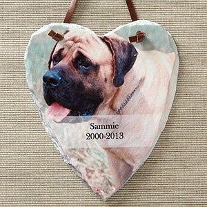 Pet Memorial Personalized Photo Heart Wall Sign - 5461