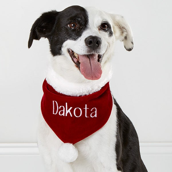 Personalized Velvet Christmas Dog Bandana - Santa Paws - Small - Pet ...