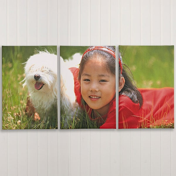 Split Panel Photo Canvas Prints - 3 Panels - 6878